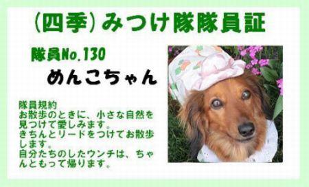 2009.6.24四季みつけ隊No.130 夢見る雛日記