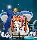 無謀にサメ狩り