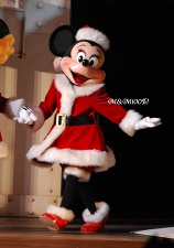 2008クリスマスオーバー・ミニー00