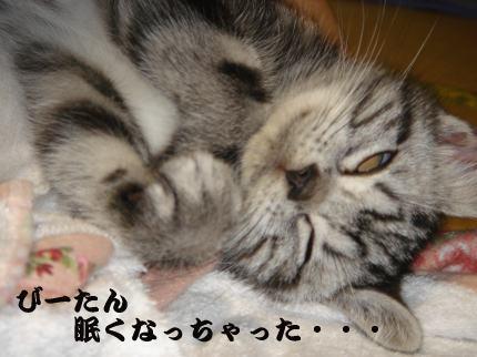 眠くなっちゃった。