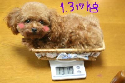 体重1111