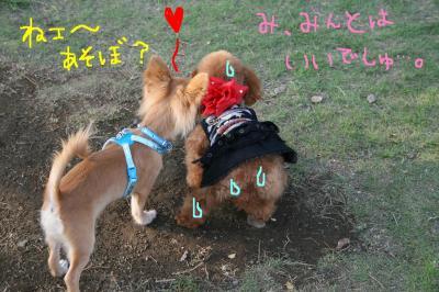 豊洲ららぽお散歩 6