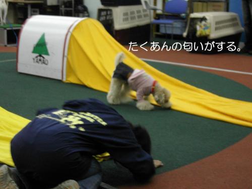 トレーニング 13