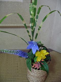 7,18お花