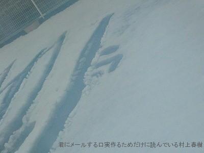 080210yuki.jpg