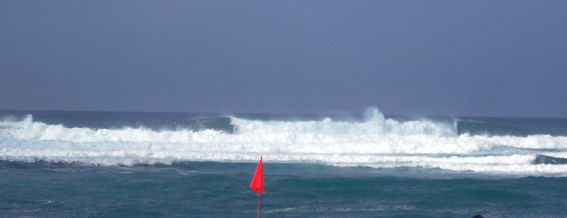 first swell