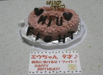 cake_20090530012437.jpg