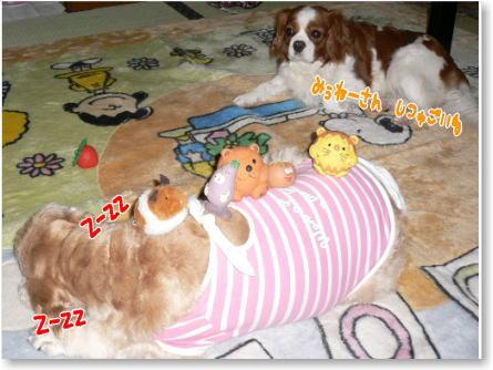 k8_20090322020842.jpg