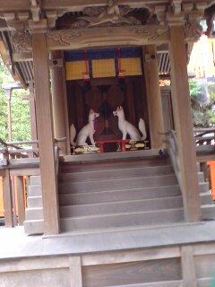 京都・伏見稲荷大社(白狐)