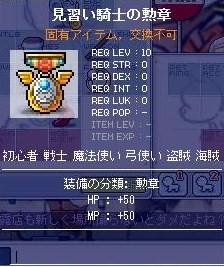 見習い騎士の勲章
