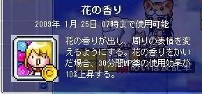 Maple0000_20081027092010.jpg
