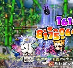 Maple0000_20081106081204.jpg