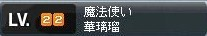 Maple0000_20081127114810.jpg