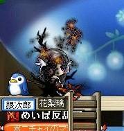 Maple0000_20090525081919.jpg