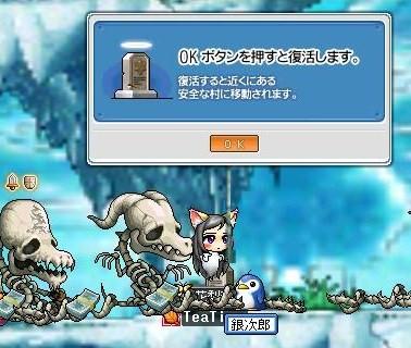 Maple0001_20081215081854.jpg