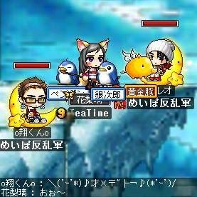 Maple0001_20090107100418.jpg