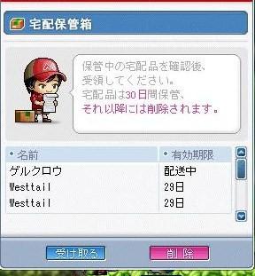 Maple0002_20081119080952.jpg