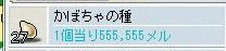 Maple0002_20081126081759.jpg