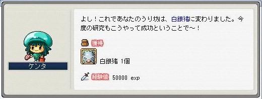 Maple0003_20081021081051.jpg