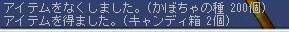 Maple0003_20081125143541.jpg