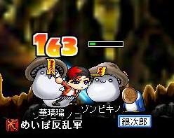 Maple0004_20081128090045.jpg