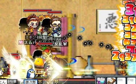 Maple0007_20081215082506.jpg
