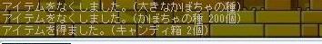 Maple0008_20081115181900.jpg