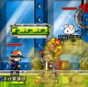 Maple0009_20081106083719.jpg