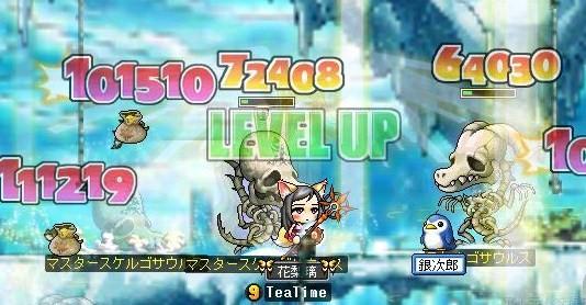 Maple0009_20090124132729.jpg