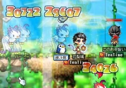 Maple0026_20081031083234.jpg