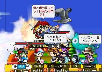 Maple0031_20081116102814.jpg