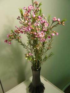 flower 3.3