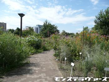 植物園散歩道