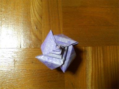 makigai1_20081225184732.jpg