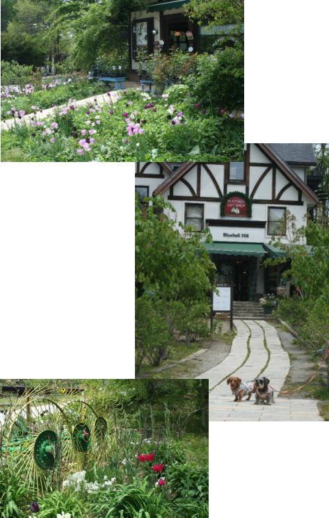 2009-5-15-102.jpg