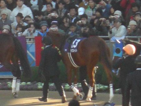 20081228_有馬記念
