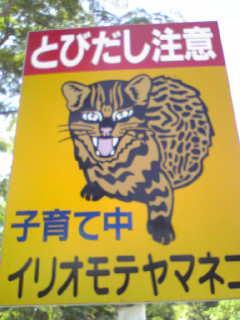 20081030184804