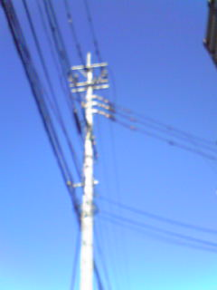 20081112113414