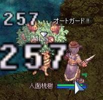 20060530212116.jpg