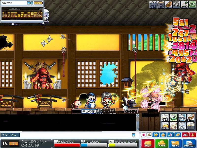 Maple0000_20081221214530.jpg