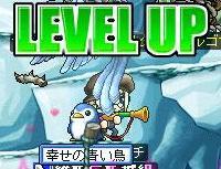 Maple0000_20090112015813.jpg