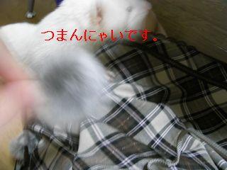 RIMG0150.jpg