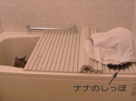 バスルームは隠れ家?2