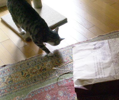 ナナちゃん、紙袋よ1