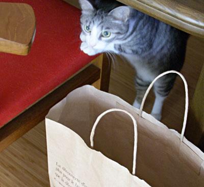 ナナちゃん、紙袋よ5