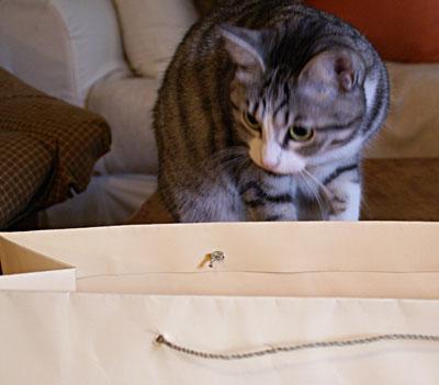 ナナと大きな紙袋12