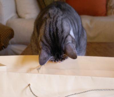 ナナと大きな紙袋ad