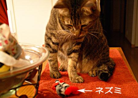 ぼくのおもちゃ3