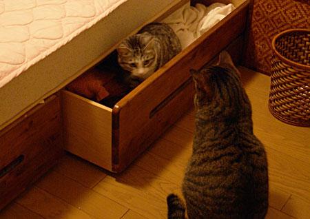 ベッドの引き出し2