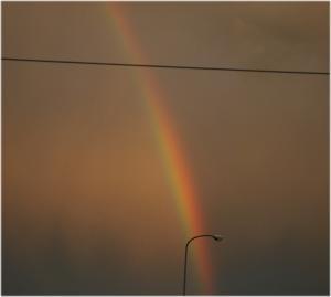 09.7.19虹